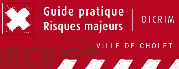 Dicrim - Guide pratique